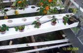 Hydoponic tuin - zwaartekracht feed