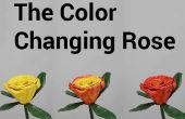 De kleur wijzigen van Rose
