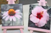 Mini Canvas foto Displays