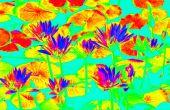 Super gemakkelijk infrarood zoals afbeeldingen (Photoshop)