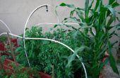 Bouw uw eigen verhoogde Garden Bed! Uw eigen voedsel te verbouwen!
