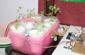 Multifunctionele hydrocultuur en bodem tuinieren oplossing