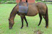 Ice pack vest voor paard
