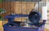 De echt stil Hamster Wheel