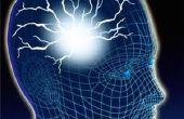 Hoe Train je hersenen gratis