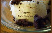 Zelfgemaakte Vegan Ice Cream... omdat niets anders is gemaakt met meer liefde