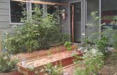 Austin Texas wicking bed aan de orde gesteld tuin