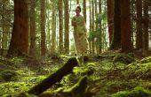 Huisgemaakte bal toga, Prom Dress, Bridal of partij Japon voor pence inclusief accessoires