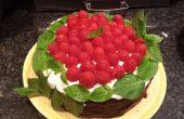 Dubbele Stack Brownie, organische framboos & Mint Cake met roomkaas slagroom