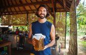 Hoe om te beginnen met uw eerste Mini Kombucha brouwerij