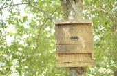 De vleermuis huis: een groen, energie efficiënte Insect afweermiddel (repellant)