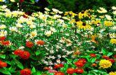 Tuinieren-Garduino-Automated System