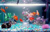 Kristal helder Water || Aquarium Power Filter Mod
