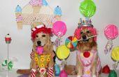 Het spel van Candyland komt tot leven kostuums