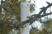 Eekhoorn bewijs Vogelhuis/waterbak
