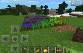 Hoe Farm In Minecraft
