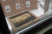 Hoe maak je een vogel Feeder voor vensterbank Open Tray