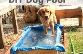 DIY hond zwembad
