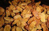 Rozijnen met een Dehydrator maken