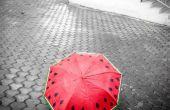 Cadeau een handgeschilderde watermeloen paraplu!