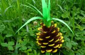 DIY ananas Room Decor * met video ** Pinterest DIY