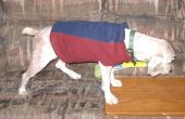 Maak een warme hond vest van trainingsbroek been