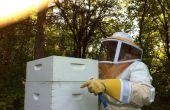 Oogsten van honing