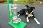 De Awesomest coolste gemakkelijkste waterschaal voor honden & katten!