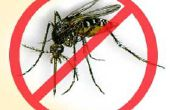 Knokkelkoorts insectenafweermiddel - Repelente para Mosquito da Dengue