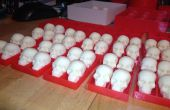 Witte chocolade schedels in PLA Trays