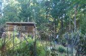 My family's garden in the woods