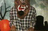 Mijn zoon 2011 Halloween kostuum