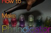 Hoe Make pH Indicator