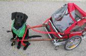 DIY hond pull kar gemaakt van een opvouwbare fiets aanhangwagen.