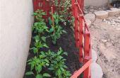 Hoe Update uw tuin jaarlijks voor bloemen, groenten of Vines