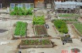 Verhoogde garden