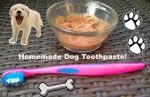 Zelfgemaakte tandpasta voor honden!