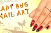 Hoe doen Lady Bug Nail Art