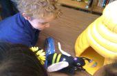 Interactieve Bee Game
