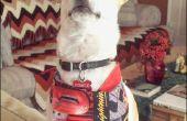 Naaien voor mannen: Beginner's Project-Dog Bandana