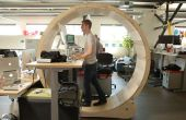 Hamster Wheel permanent bureau