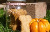 Pompoen & pindakaas smaak hond behandelt