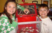 Hoe het bouwen van een heremietkreeften (of andere kleine beestje) kooi