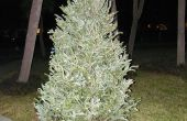 Maknig een didjeridoo van een kerst boom. Bore out method