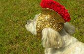 Romeinse Gladiator helm voor honden