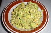 Linze Sprout Guacamole salade