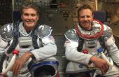 Het verzenden van David Hasselhoff en Ian Ziering in de ruimte tegen haaien voor $150