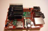 MCP3008 Raspberry Pi Breakout hoed