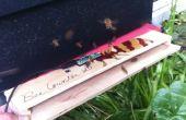 Honey Bee teller