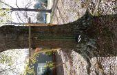 Pull-up bar op een boom met geen ledematen